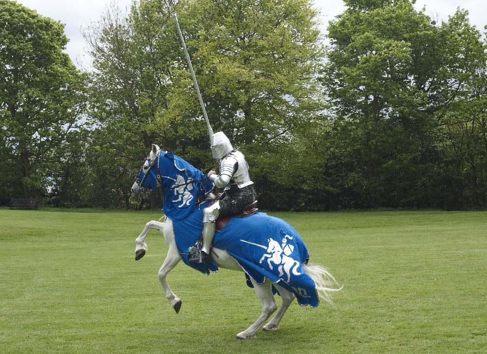 The Anglian Knight