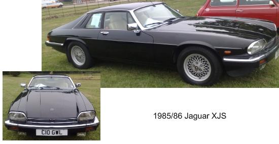 The lovely Jaguar