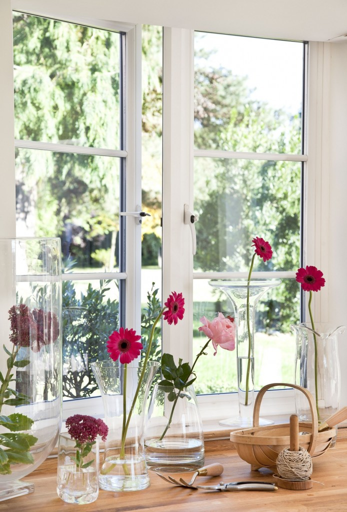 Red flowers bring the window to life