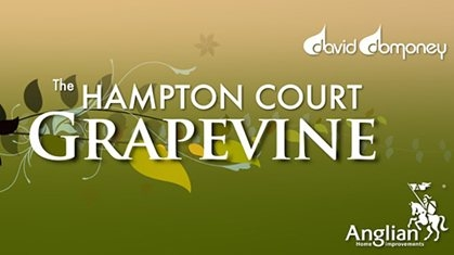HC Grapevine logo