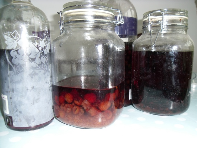 Raspberry and Sloe Gin