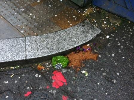 My Pothole garden no more