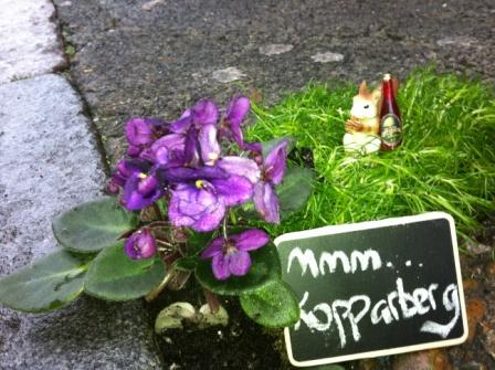 Pothole garden with a Kopparberg loving squirrel