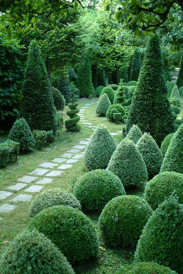 What Shape Will You Choose For Your Topiary Bush Good