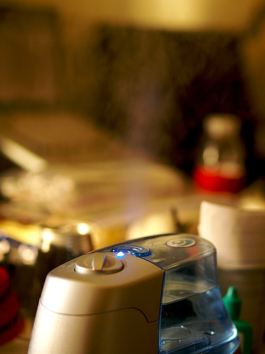 Humidifier (enersauce via Flickr)