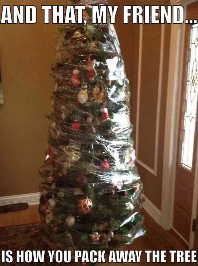 Christmas tree wrapped
