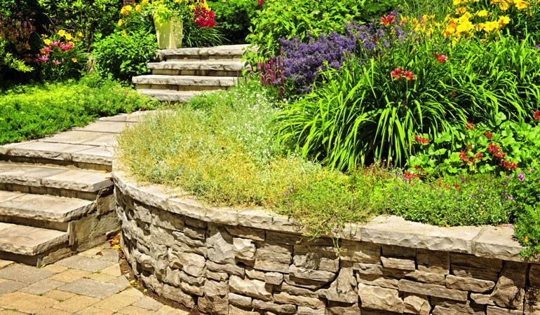 Landscaping a Large Garden: what do you do with all the space?
