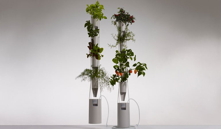 How hard can it be to Create a Window Garden in your Urban Home?