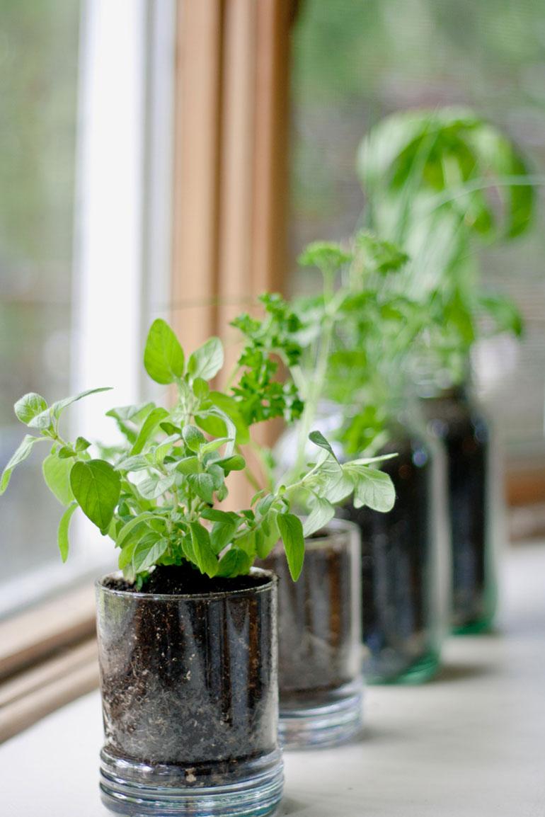 herb-pots