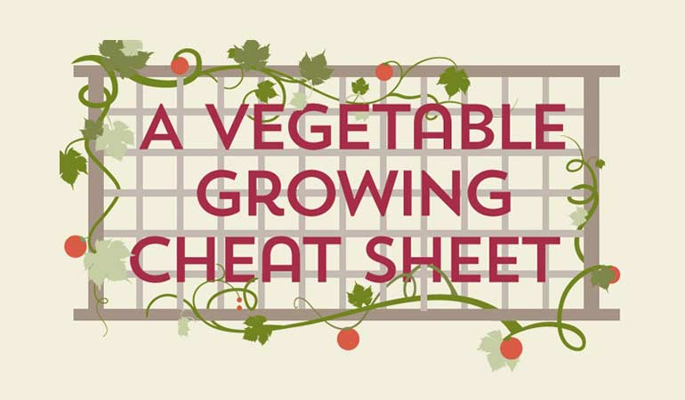 A Vegetable Growing Cheat Sheet [infographic]
