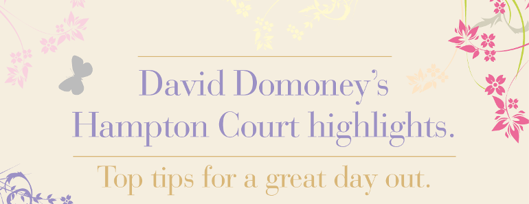 David Domoney's Top Tips for a grand day at Hampton Court Palace Flower Show