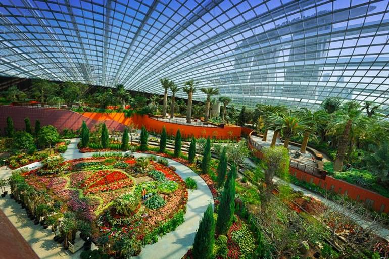 Flower Dome Interior