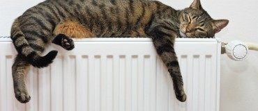 How can you Cash in on the Latest Heating Grant?