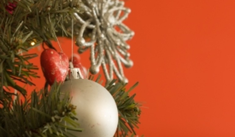Tips to Read Before you set up your Christmas Tree