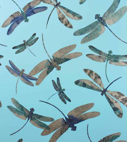 Dragonfly_Dance_by_Matthew_Williamson_
