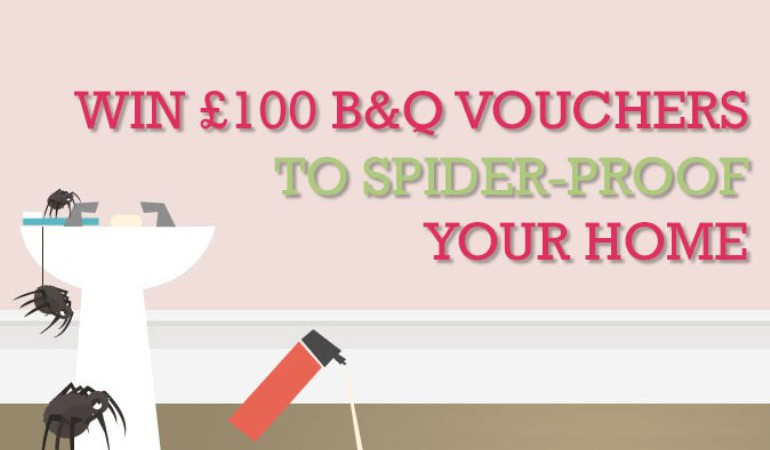 Incy WIN-cy £100 B&Q Vouchers on the Web