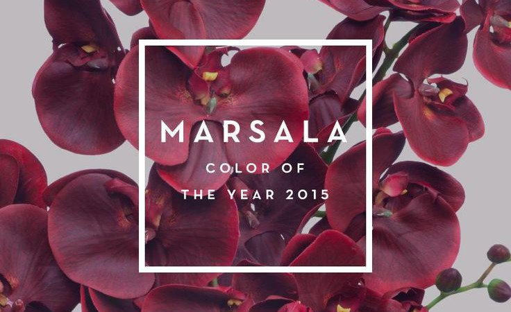 Here is What 9 Interior Designers Had to Say About Pantones 2015 Colour of the Year