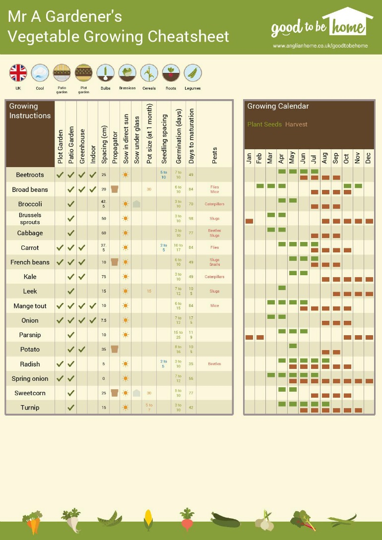 Interactive vegetable growing guide page 1