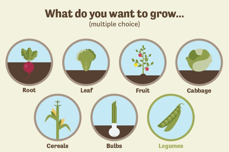 Groups of vegetables on the interactive growing guide