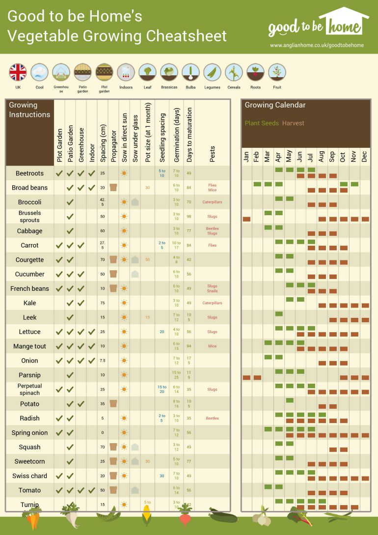 Your personalised vegetable growing cheat sheet for Vegetable growing guide