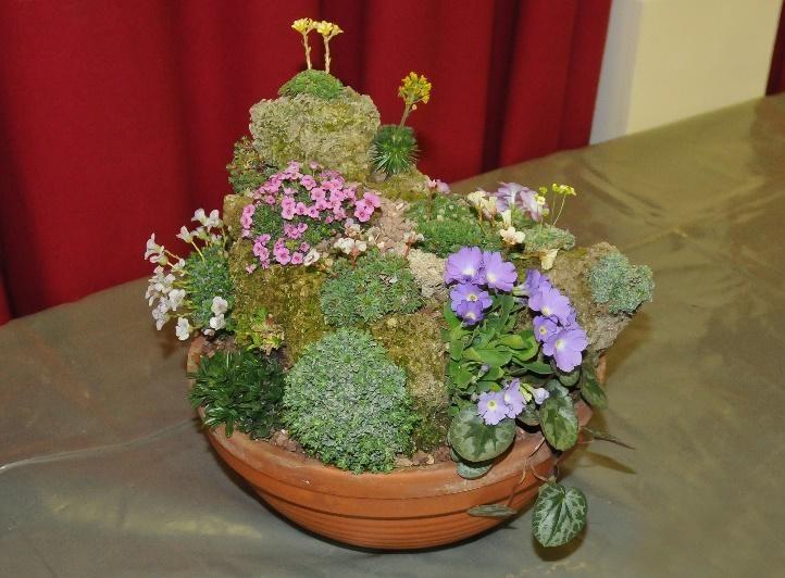 David Morris's micro-garden based on Mont Blanc