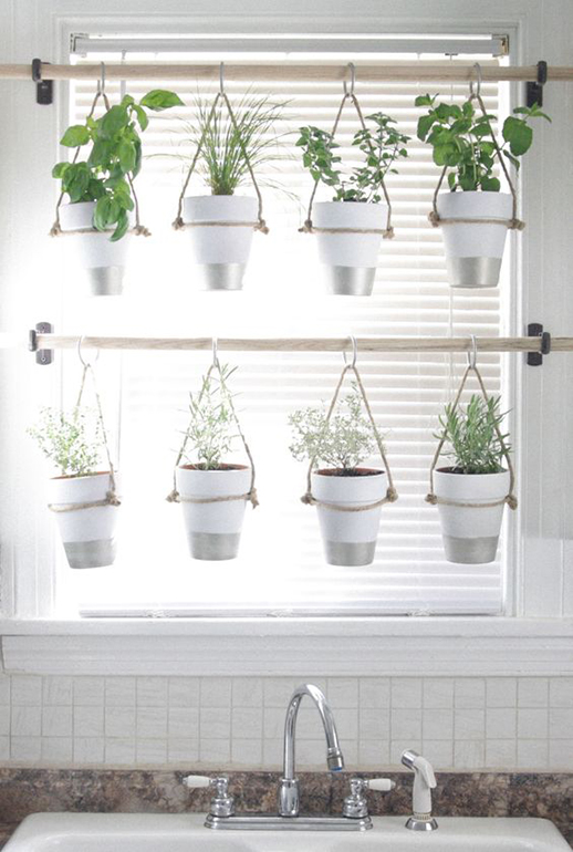 Hanging Plant pots in a window
