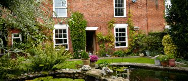 Should I get hardwood or softwood timber windows?