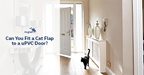 Can you fit a cat flap to a upvc door for Upvc french doors with cat flap