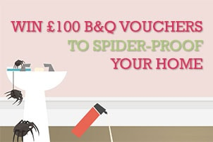 Spider-proof your home competition